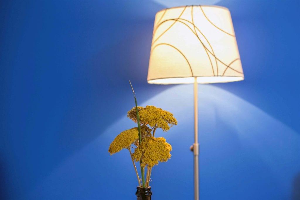 Zavala 222 B1 bedroom flowers and lamp